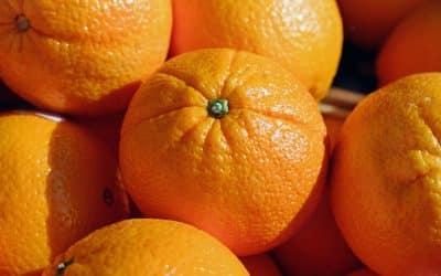 Oranges contre le cancer : du nouveau!